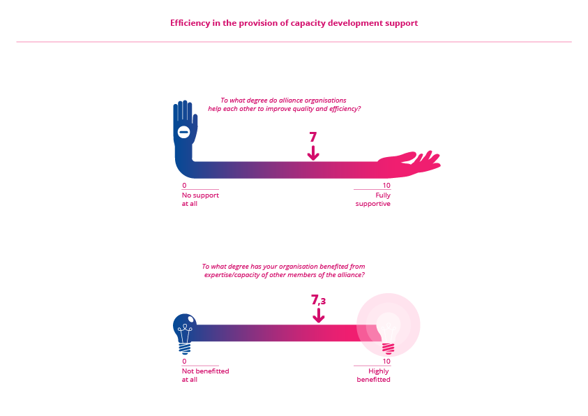 Efficiency in the provision of capacity development support v3